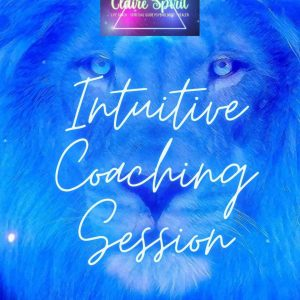 image of Intuitive Coaching Session